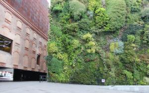 La nueva innovación son los jardines verticales